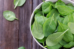 Fresh spinach in bowl Royalty Free Stock Images