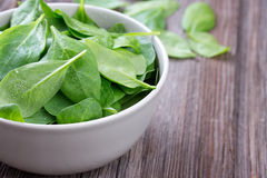 Fresh spinach in bowl Stock Photos