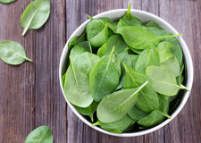 Fresh spinach in bowl Stock Images