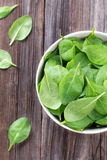 Fresh spinach in bowl Royalty Free Stock Photography