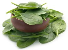 Fresh Spinach. In a bowl over white background Stock Photos
