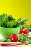 Fresh spinach in a green bowl Royalty Free Stock Images