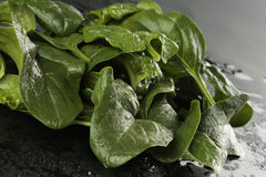 Fresh spinach leaves. On black background Stock Photography