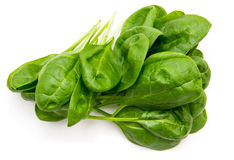 Fresh spinach leaves from above. Fresh spinach leaves on a white background seen from above Royalty Free Stock Images