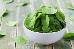 Fresh spinach leaves in bowl on rustic kitchen table Royalty Free Stock Images