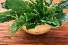 Fresh spinach leaves in bowl Stock Images