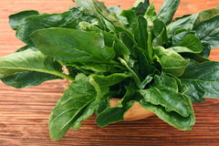 Fresh spinach leaves in bowl Stock Image