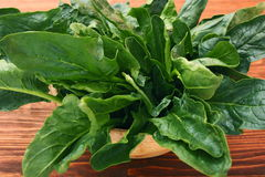 Fresh spinach leaves in bowl Royalty Free Stock Photography