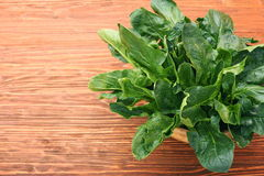 Fresh spinach leaves in bowl Royalty Free Stock Images