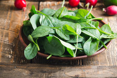 Fresh spinach leaves in ceramic bowl Stock Photography