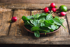 Fresh spinach leaves in ceramic bowl Stock Image