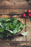 Fresh spinach leaves in ceramic bowl Stock Photos
