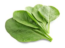 Fresh spinach leaves. On white background Royalty Free Stock Photo