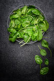 Fresh spinach leaves in metal bowl on dark background Royalty Free Stock Photo