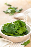 Fresh spinach leaves. Royalty Free Stock Photos