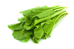 Fresh Spinach Leaves Royalty Free Stock Photo