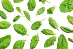 Fresh spinach leaves. On white background Royalty Free Stock Photos