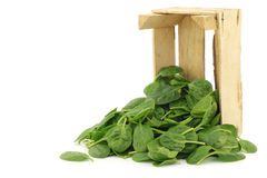Fresh spinach leaves in a wooden box Royalty Free Stock Photos