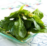 Fresh spinach salad Royalty Free Stock Images