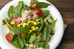 Fresh spinach salad with tuna and corn, small pieces of cherry tomatoes in white plate Stock Photo