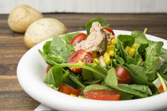 Fresh spinach salad with tuna and corn, small pieces of cherry tomatoes in white plate Stock Photos