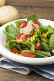 Fresh spinach salad with tuna and corn, small pieces of cherry tomatoes in white plate Stock Image