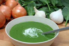 Fresh Spinach Soup. A nutritious bowl of fresh spinach soup, with some of the ingredients behind Stock Photos