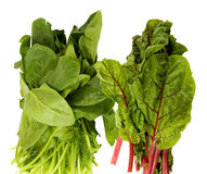 Fresh spinach and swiss chard Stock Photo