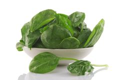 Fresh spinach in a white bowl Royalty Free Stock Photos