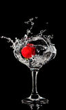 Fresh splashing strawberry. Into a wet cocktail glass Royalty Free Stock Photography