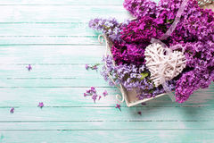 Fresh splendid lilac flowers on tray  and  white decorative hear Stock Images