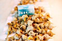 Fresh Spotted babylon snails and escargots on farmer market Stock Photos