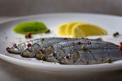 Fresh sprats fish Stock Photo
