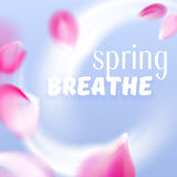 Fresh spring air flow with flying vector pink petals. On blue background Royalty Free Stock Image