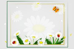 Fresh spring background with grass, dandelions and daisies. Design banner with spring is here logo. Card for spring season. Design vector illustration