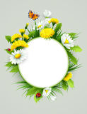 Fresh spring background with grass, dandelions and daisies Stock Photo