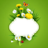 Fresh spring background with grass, dandelions and daisies Royalty Free Stock Photography