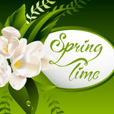 Fresh spring background with white flowers and Stock Photo