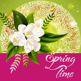 Fresh spring background with white flowers and Stock Photography