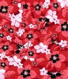 Fresh spring blossom Stock Image
