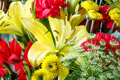 Fresh Spring Boquet of Mums and Lillys Stock Photo