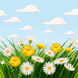 Fresh spring, daisies and dandelions, grass. Greeting, , Cartoon style, vector illustration Stock Images