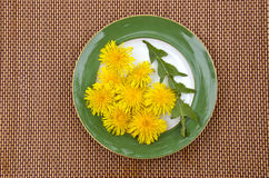 Fresh spring dandelion leaf and flowers in plate Stock Photo