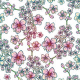 Fresh spring floral seamless pattern on white background Royalty Free Stock Image