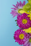 Fresh spring flower bouquet Stock Photography