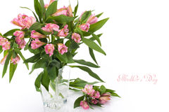 Fresh spring flowers as a holiday postcard design with copy space Royalty Free Stock Photos
