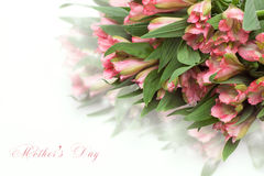 Fresh spring flowers as a holiday postcard design Royalty Free Stock Image