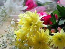 Fresh spring flowers bouquet Royalty Free Stock Photo