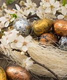 Easter eggs in spring decoration Stock Images