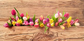 Fresh spring flowers on an Easter banner. Fresh spring flowers with a mix of daffodils and tulips on a panoramic Easter banner with textured natural wood stock image